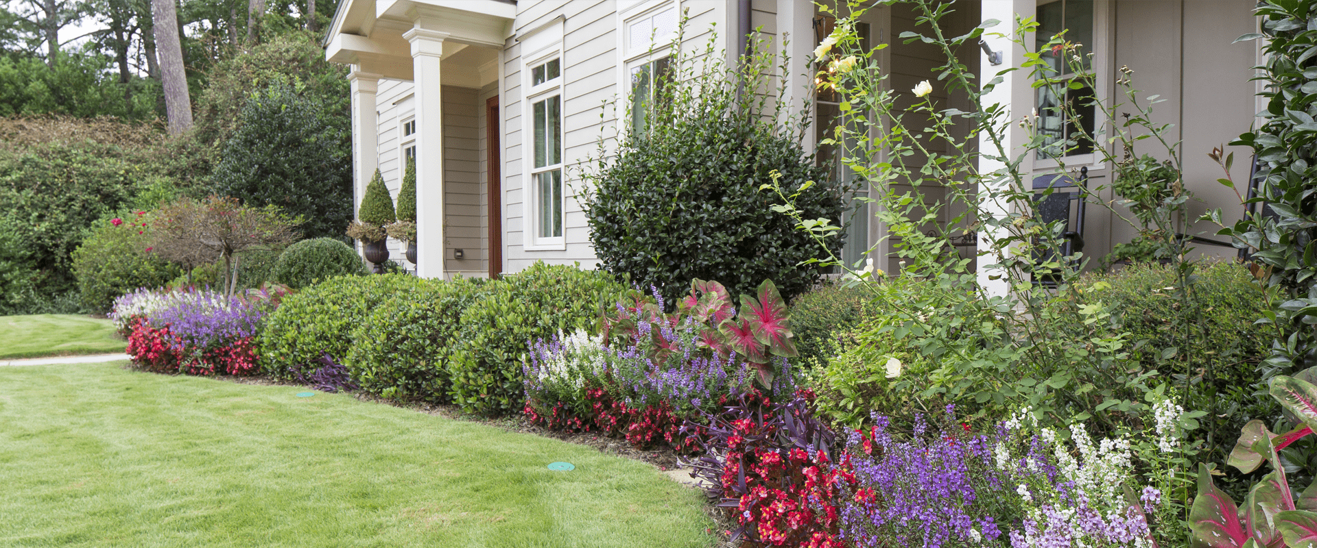 beautiful landscaping in front of a residential home